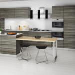 modern kitchen cabinets orlando